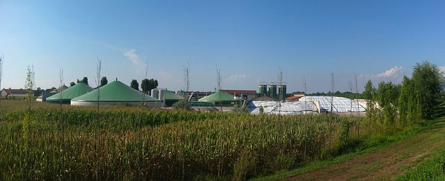 Image foa biogas plant (Anaerobic digester)