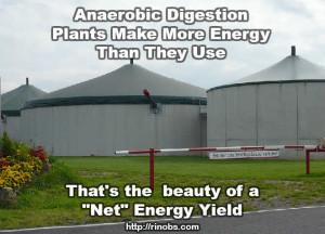 Understanding anaerobic digestion energy yeild
